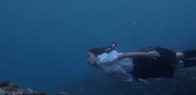 Still the Water di Naomi Kawase, a cura di Arianna Pagliara