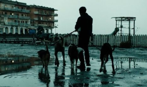 Dogman di Matteo Garrone, a cura di Francesca Ferri